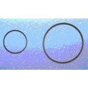 O-Ring Piccolo