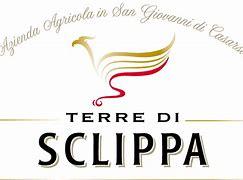 Logo Terre di Sclippa